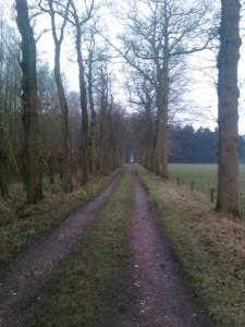 De route loopt langs goed berijdbare en minder goed berijdbare boereslagen...