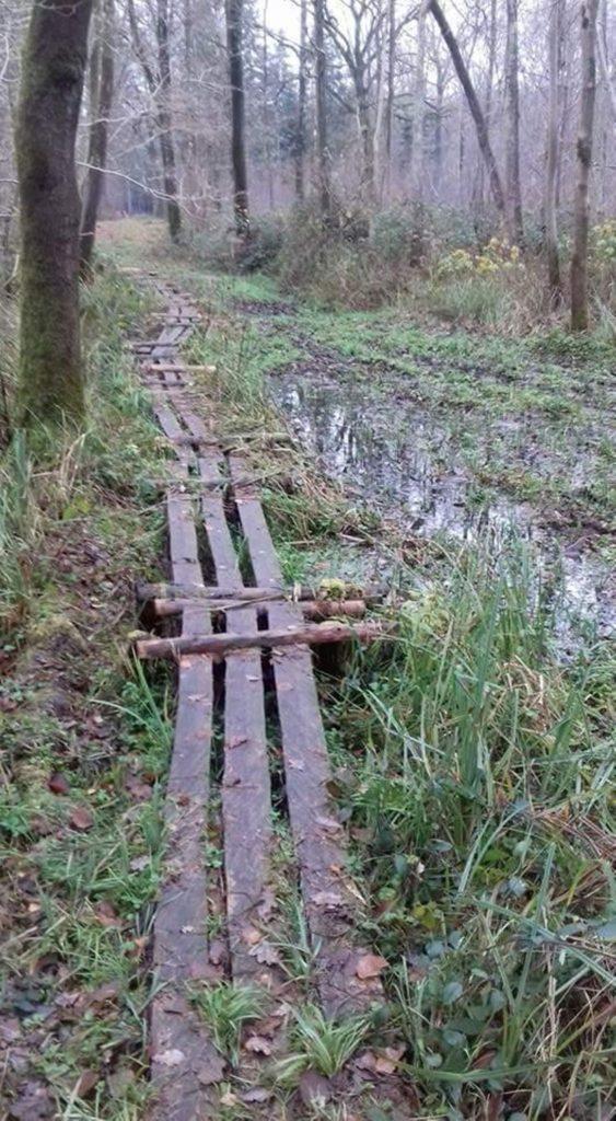 gladde brug (naast lopen!)
